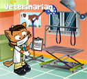 Veterinarian costumes