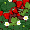 Strawberry Field Background