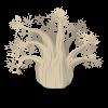 Johannesburg Baobab Tree