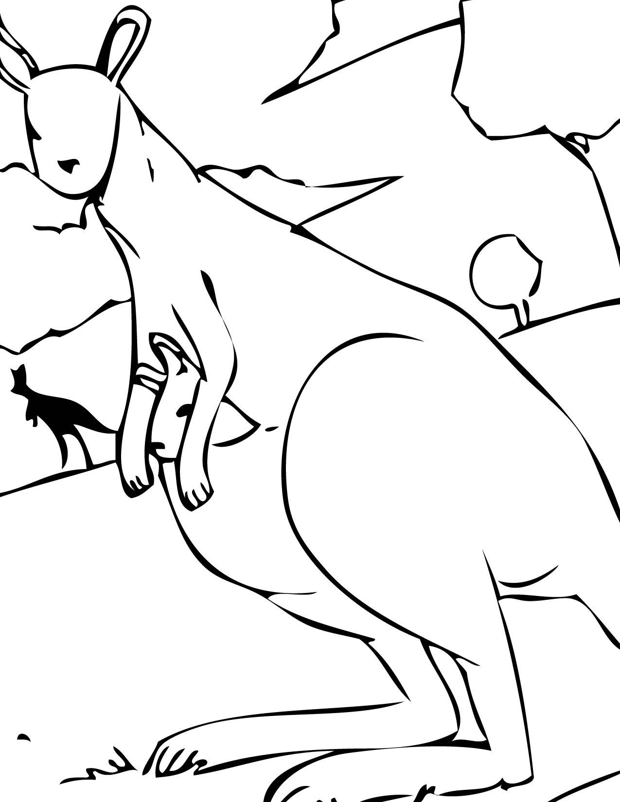 Free coloring pages kangaroo - Kangaroo