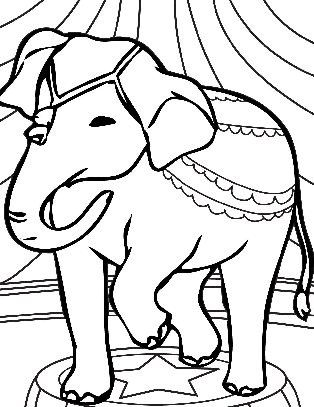Elephant Acts