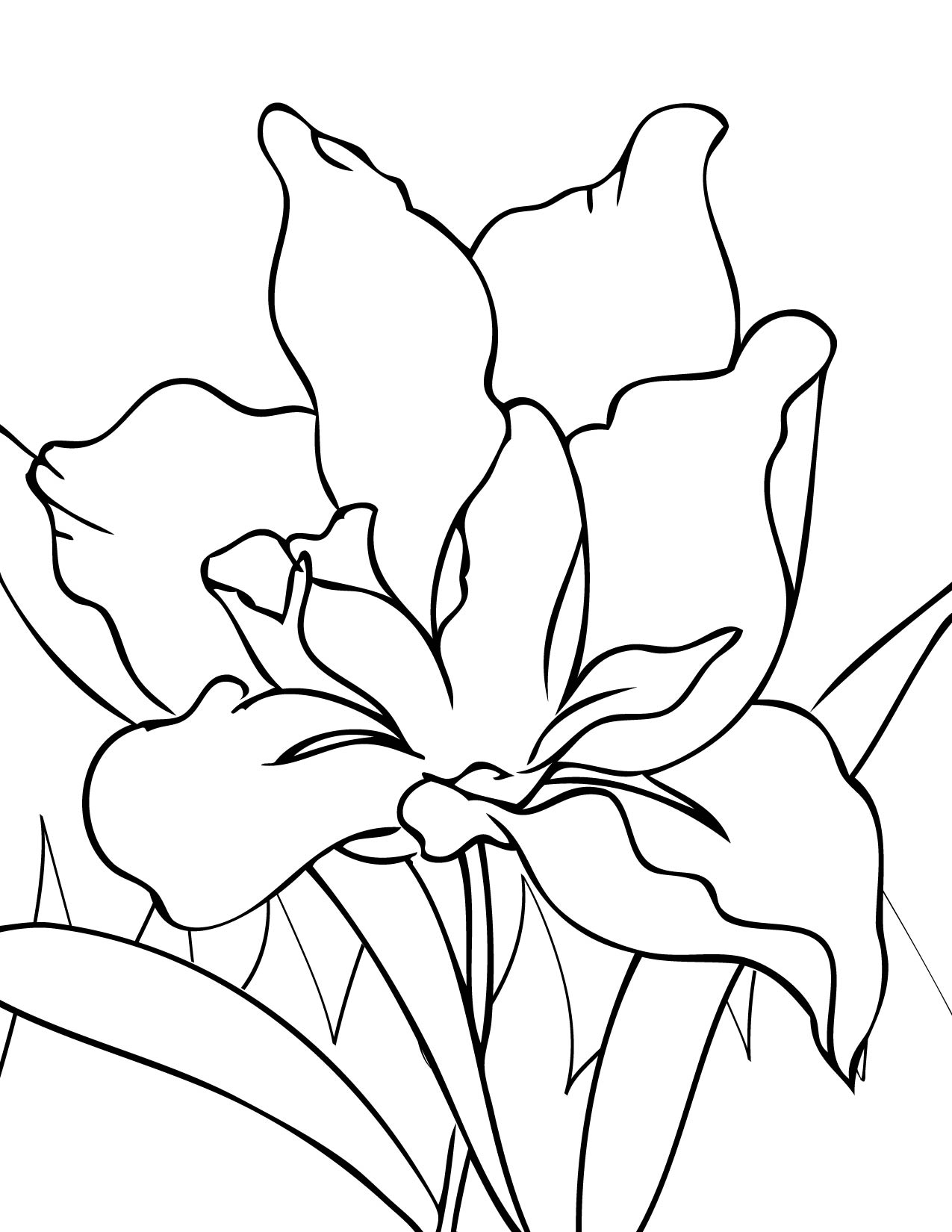 iris coloring page handipoints