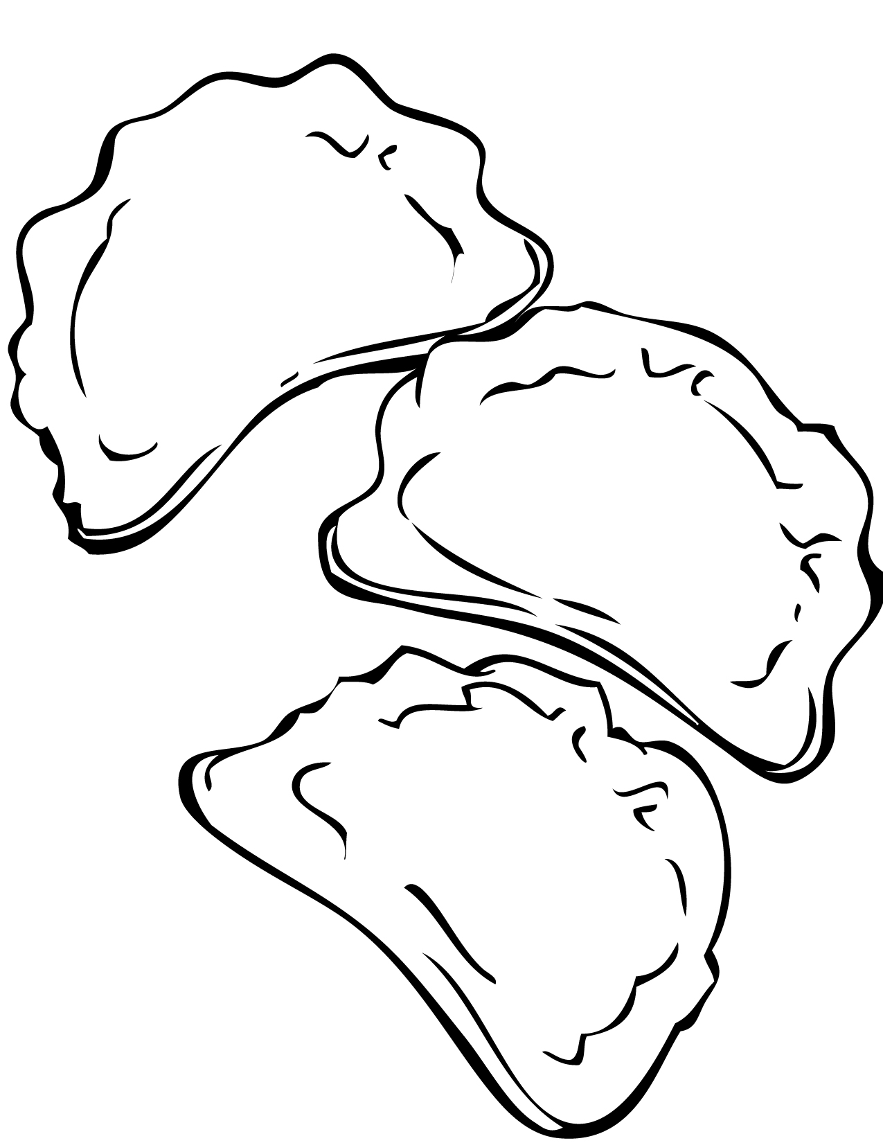 Chinese Dumpling Drawing Jiaozi Dumplings