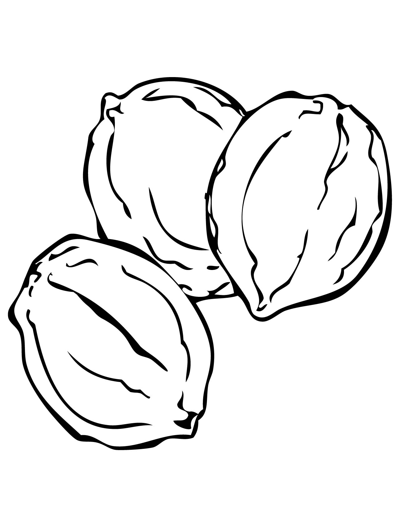 walnut coloring page handipoints