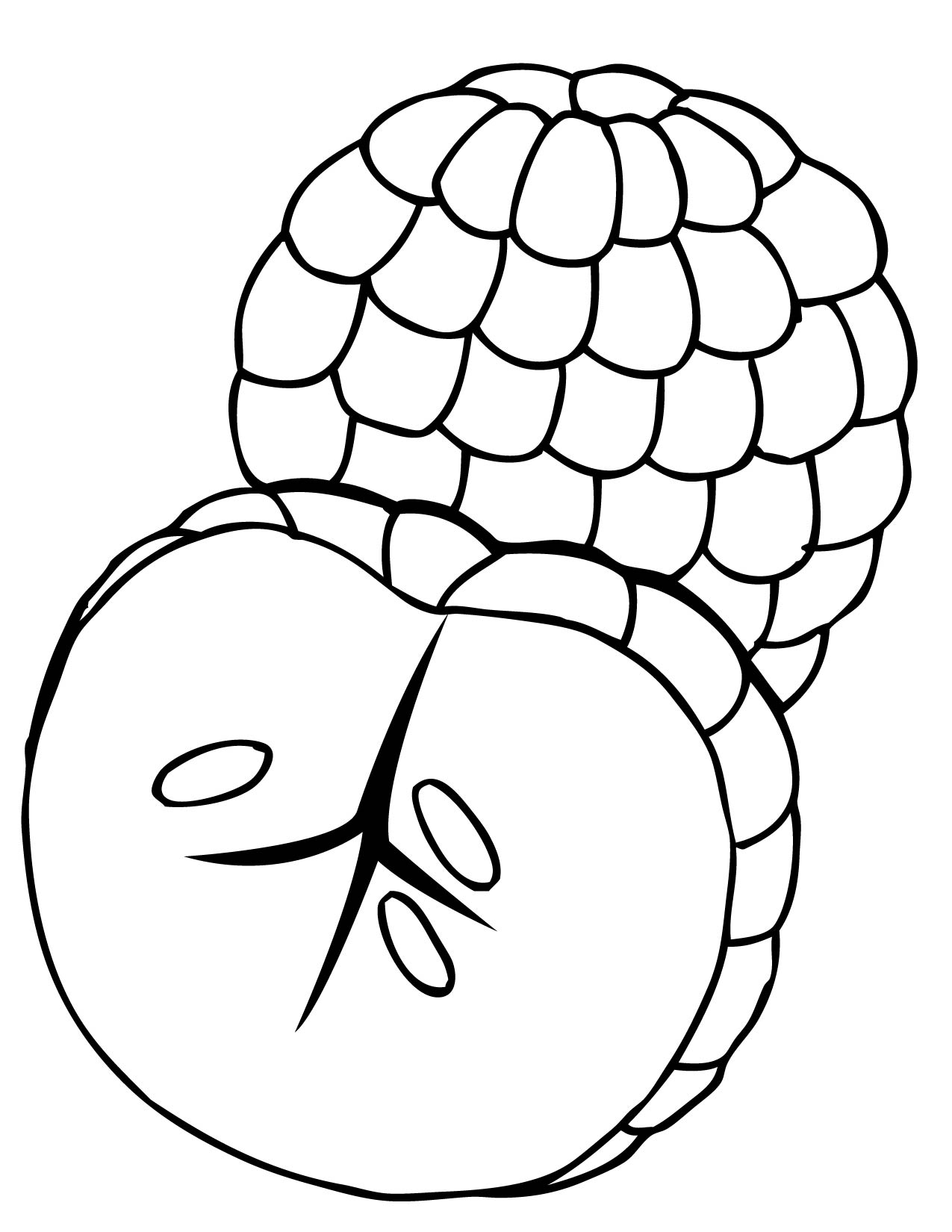 tropical fruits coloring pages handipoints