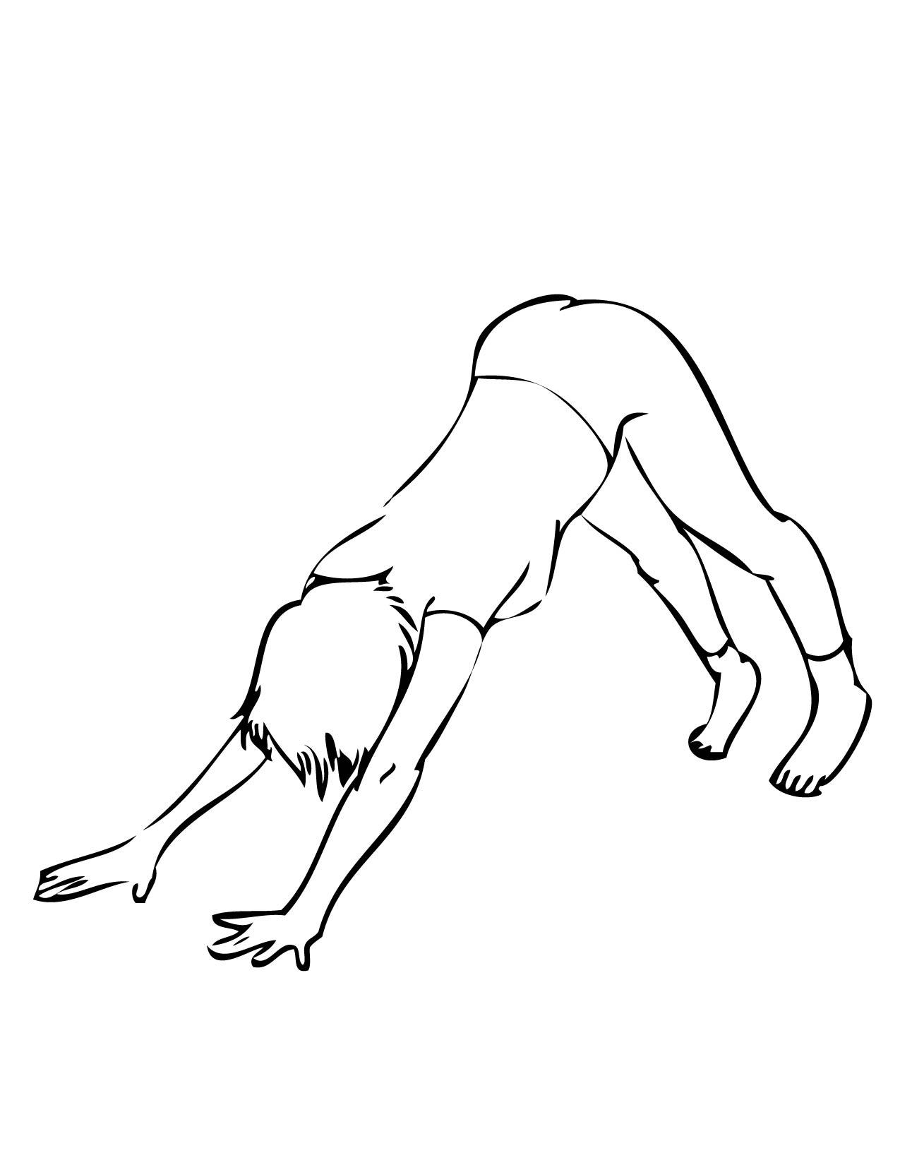 Coloring pages yoga - Downward Facing Dog