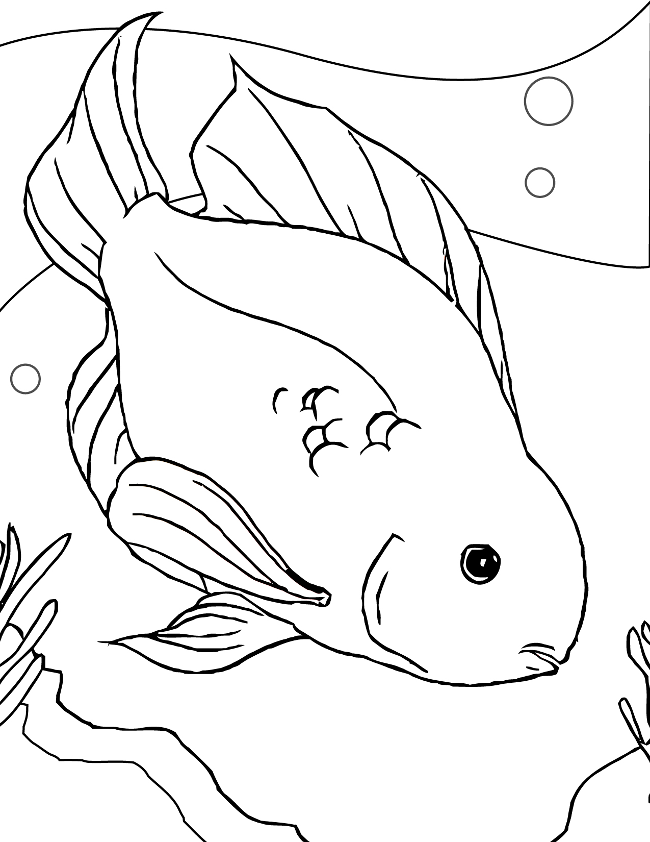 Blood Parrot Coloring Page - Handipoints