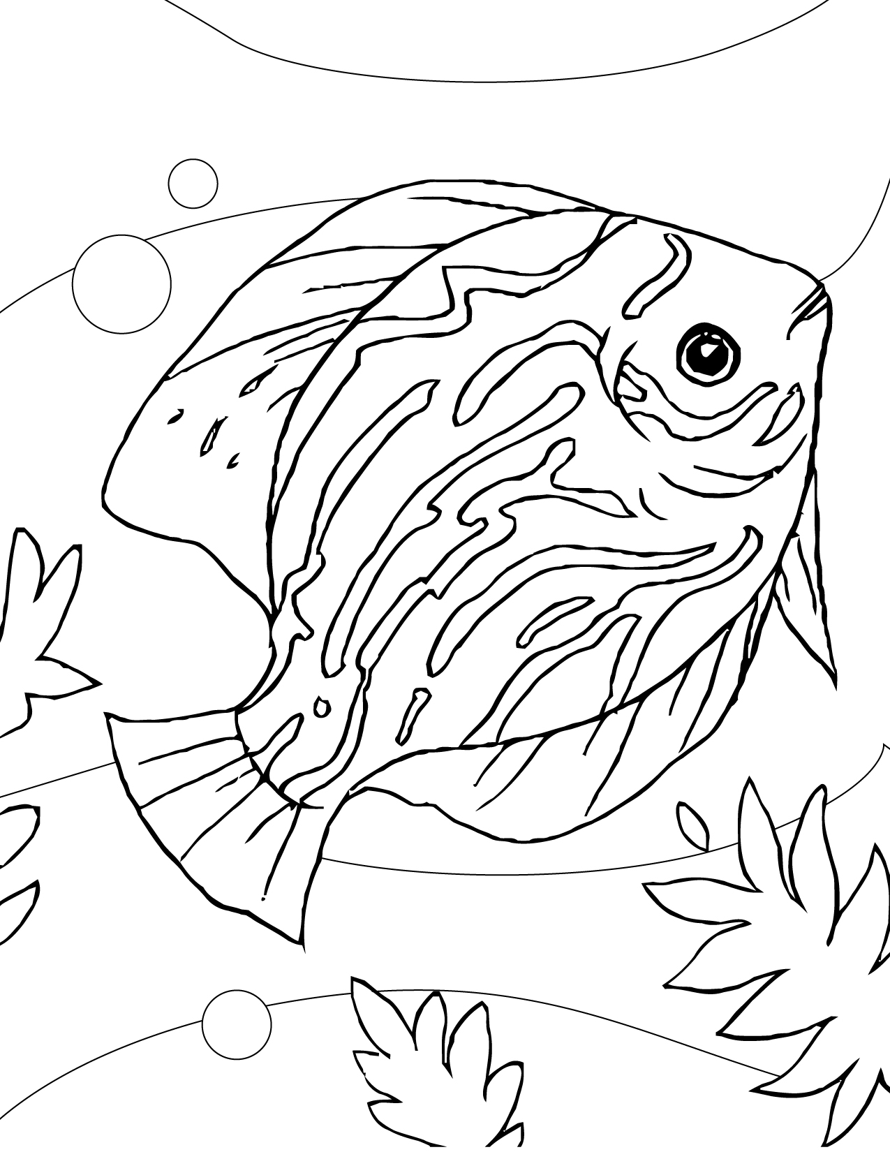 Adult Best Aquarium Coloring Page Images best aquarium fish coloring pages handipoints discus images