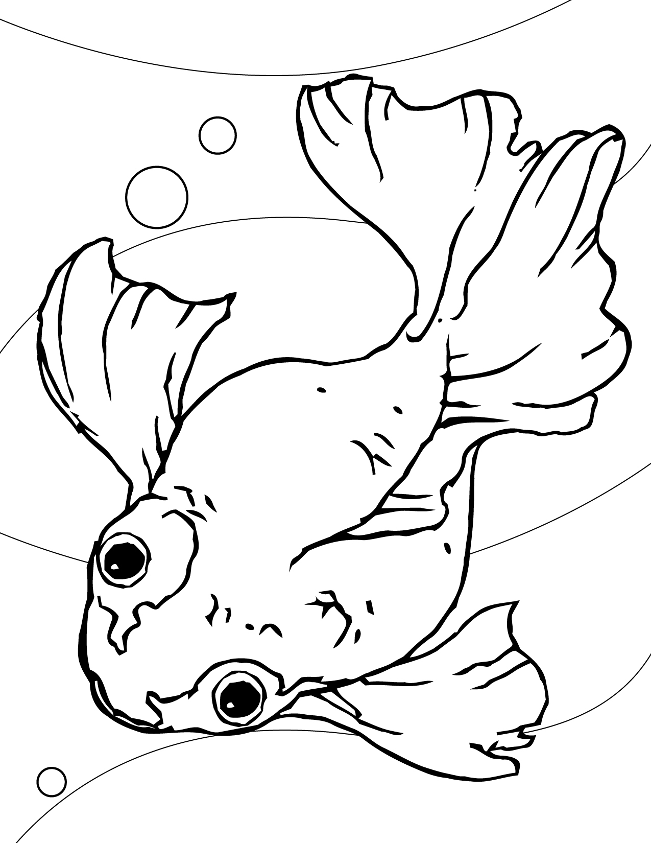 Goldfish Coloring Page Handipoints