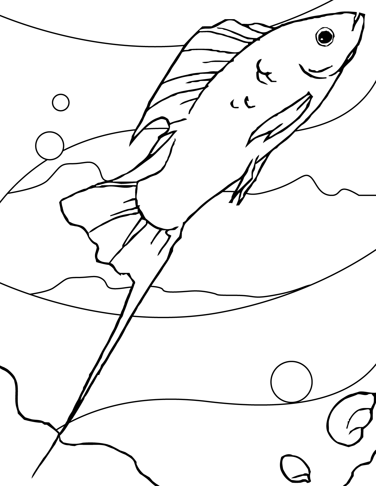 coloring pages fish aquarium virtren com
