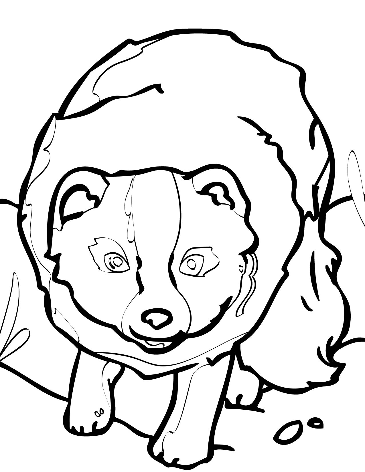 baby arctic fox coloring pages cute - photo #22
