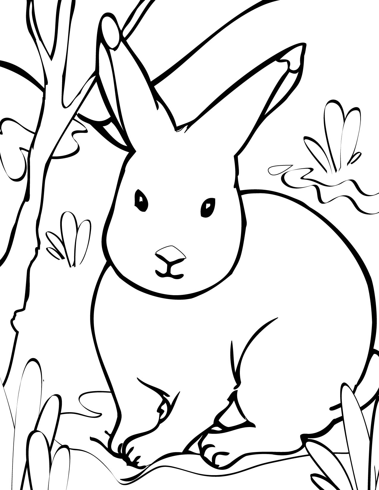 Polar animals coloring pages for kids - Arctic Hare