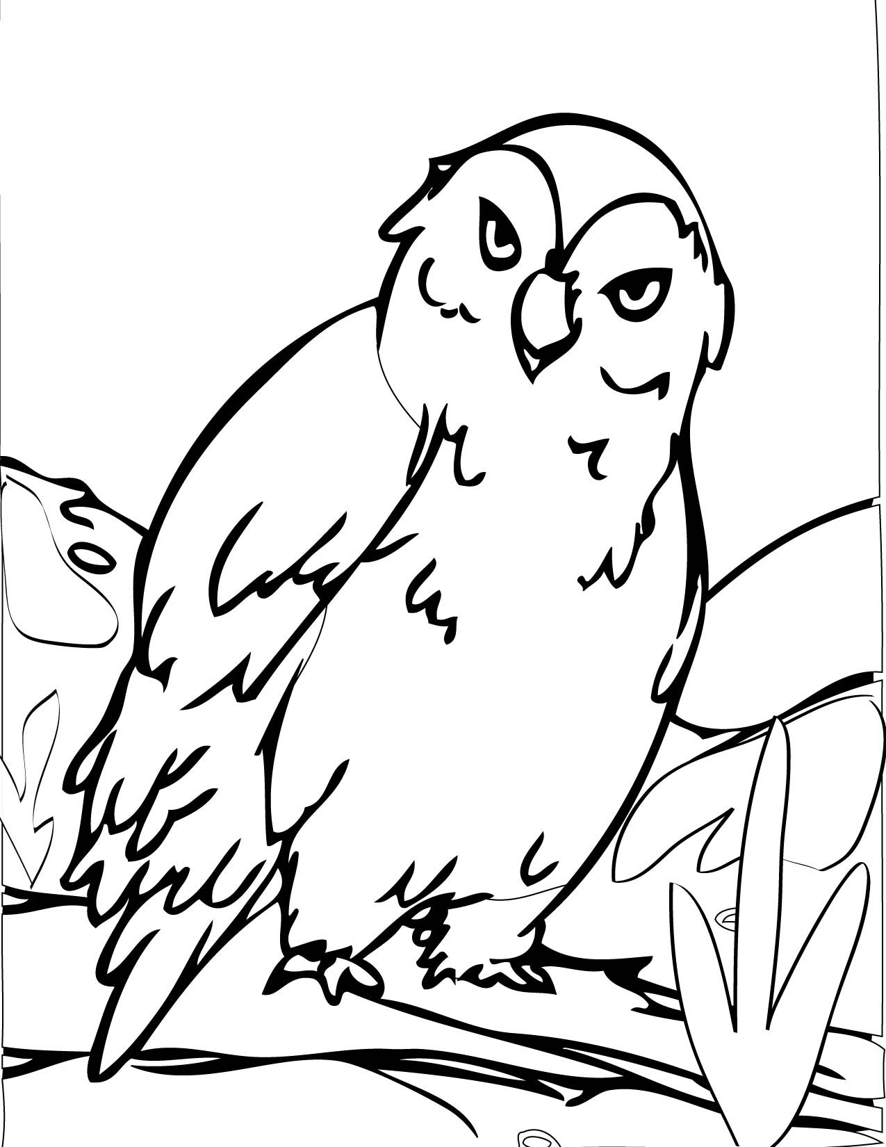 Polar animals coloring pages for kids - Snowy Owl
