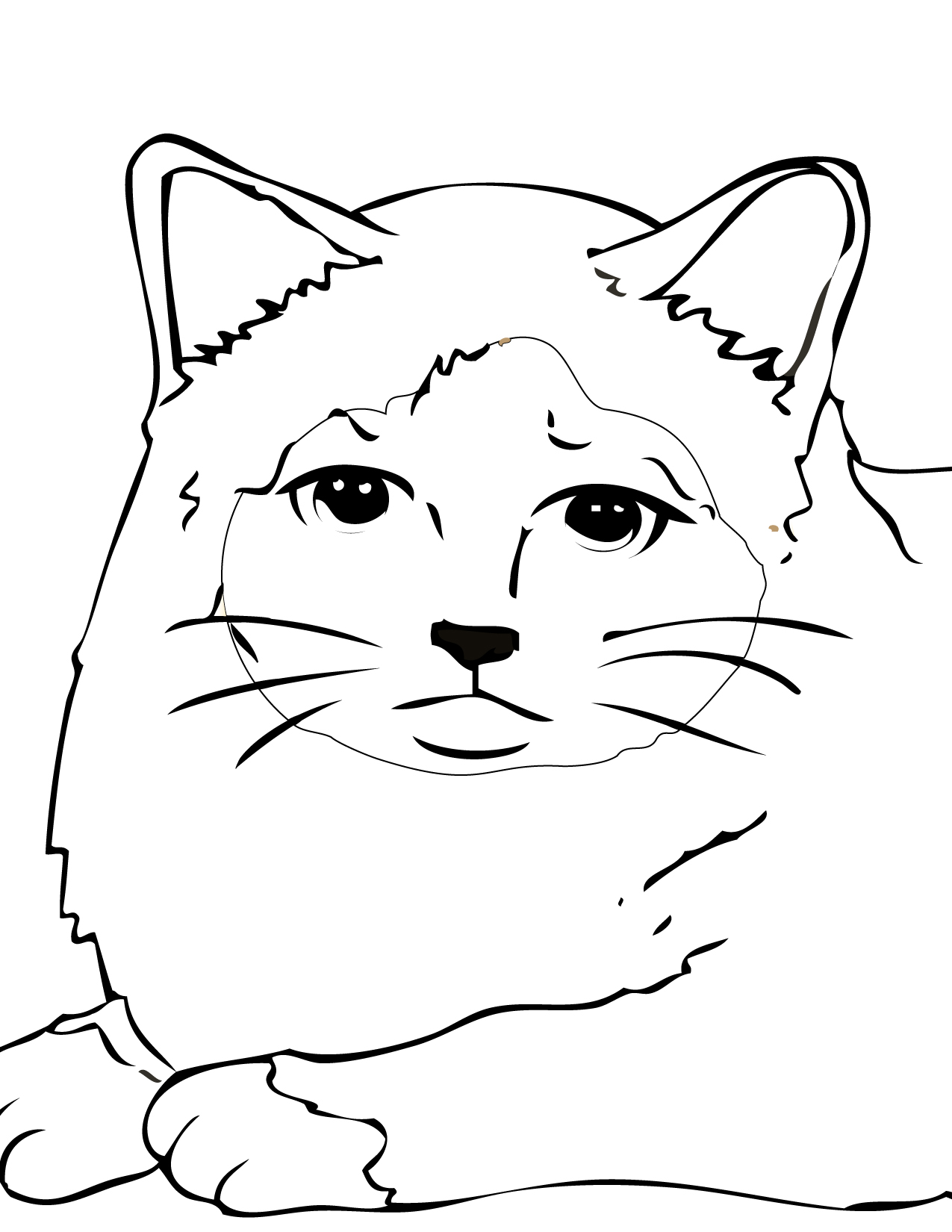 Free Cool Cat Coloring Pages