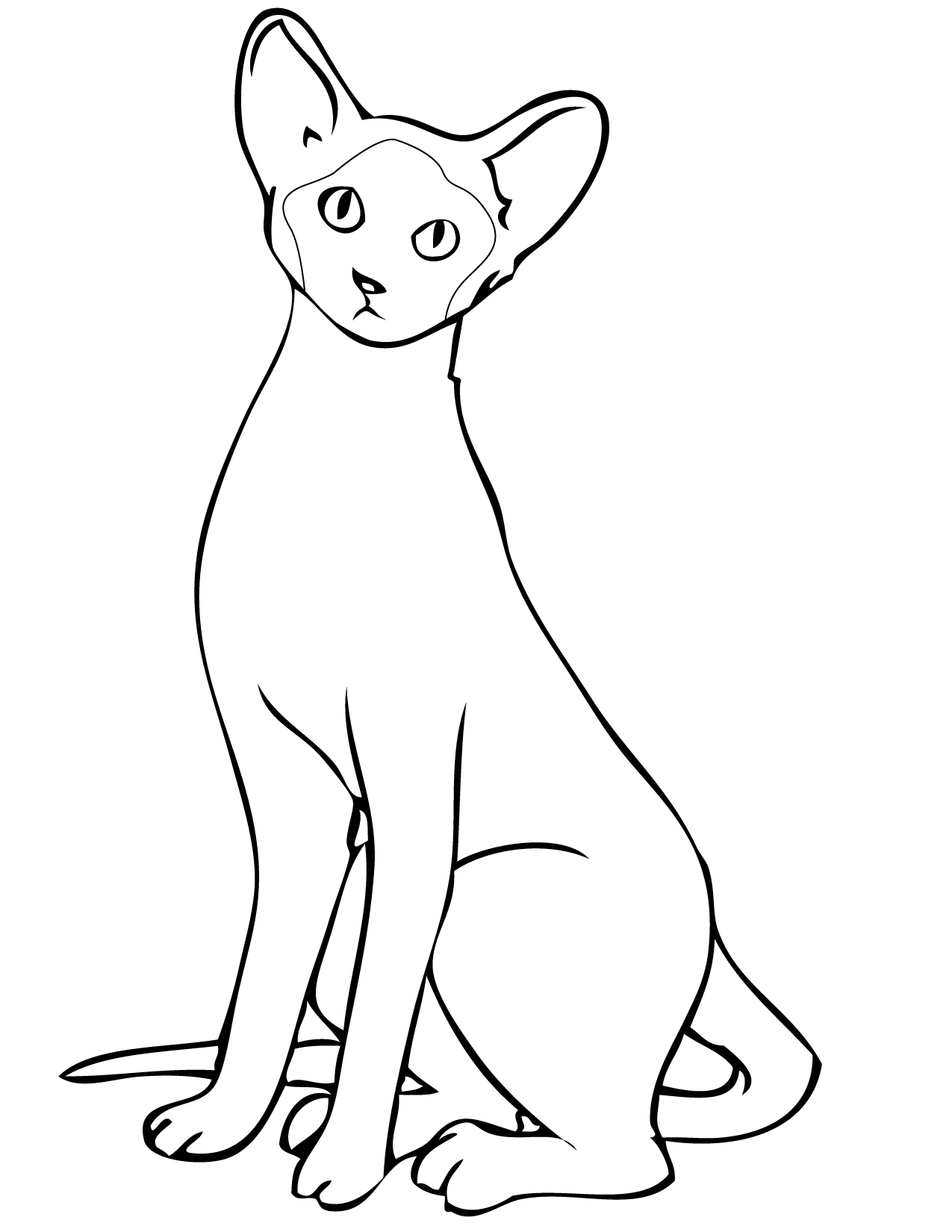 Simple Kitten Coloring Pages Alltoys for