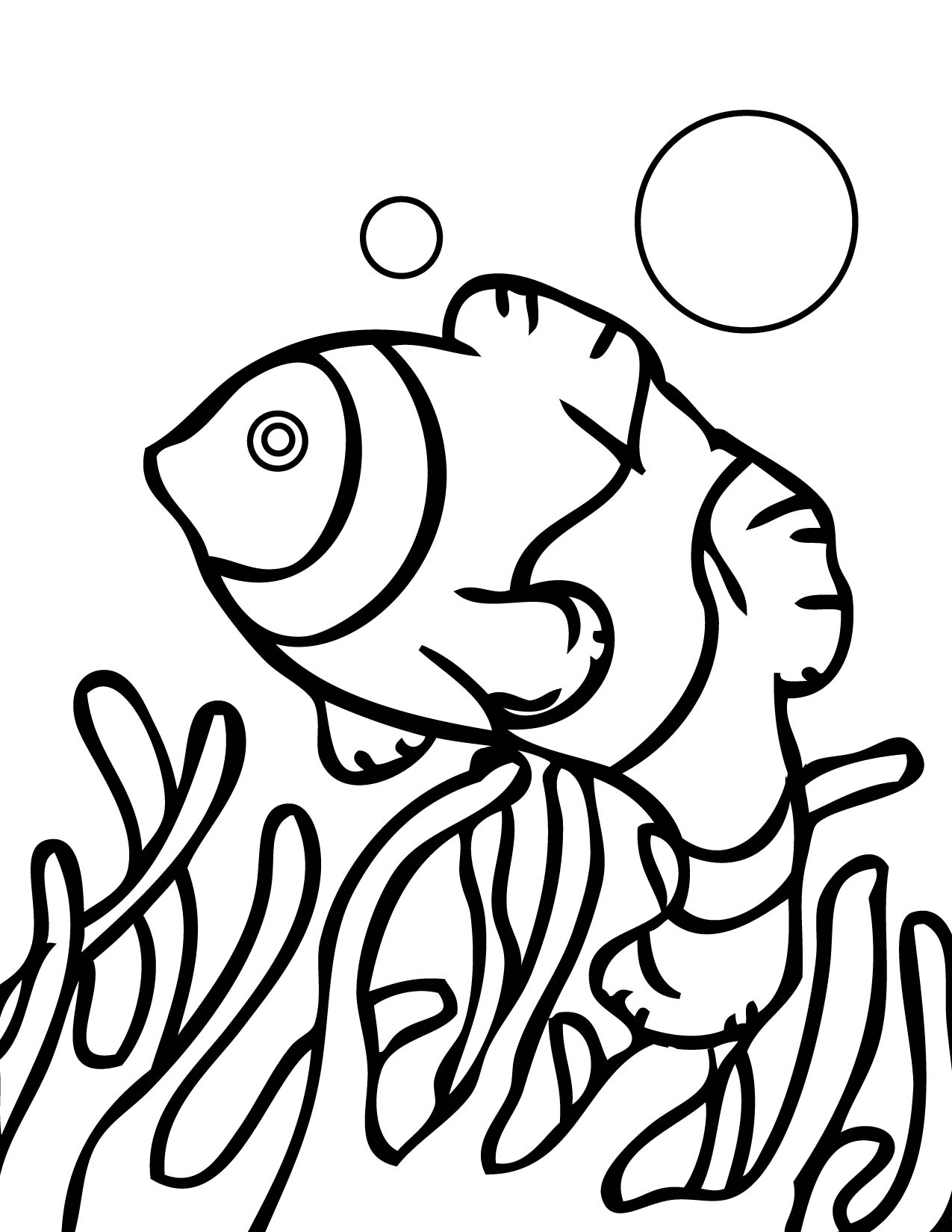 austrailan barrier reef coloring pages - photo#33