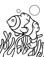 coral reefs coloring pages print and color free coloring book pages with your kids share with friends anemonefish