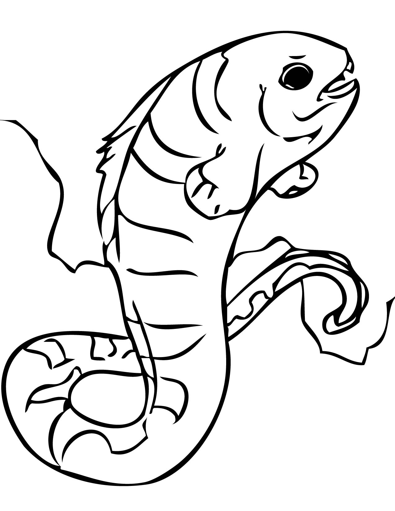 coral reefs coloring pages handipoints