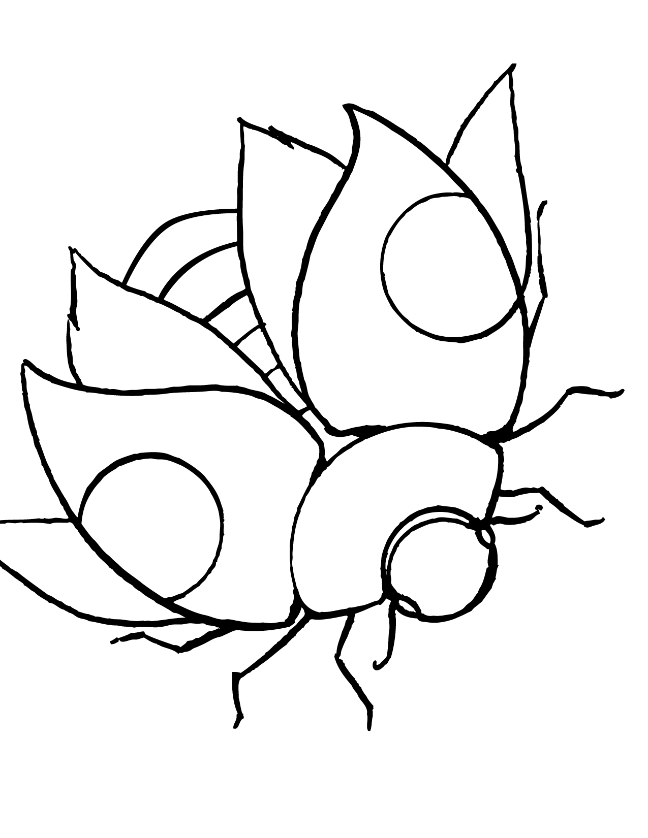 Coloring pages insects