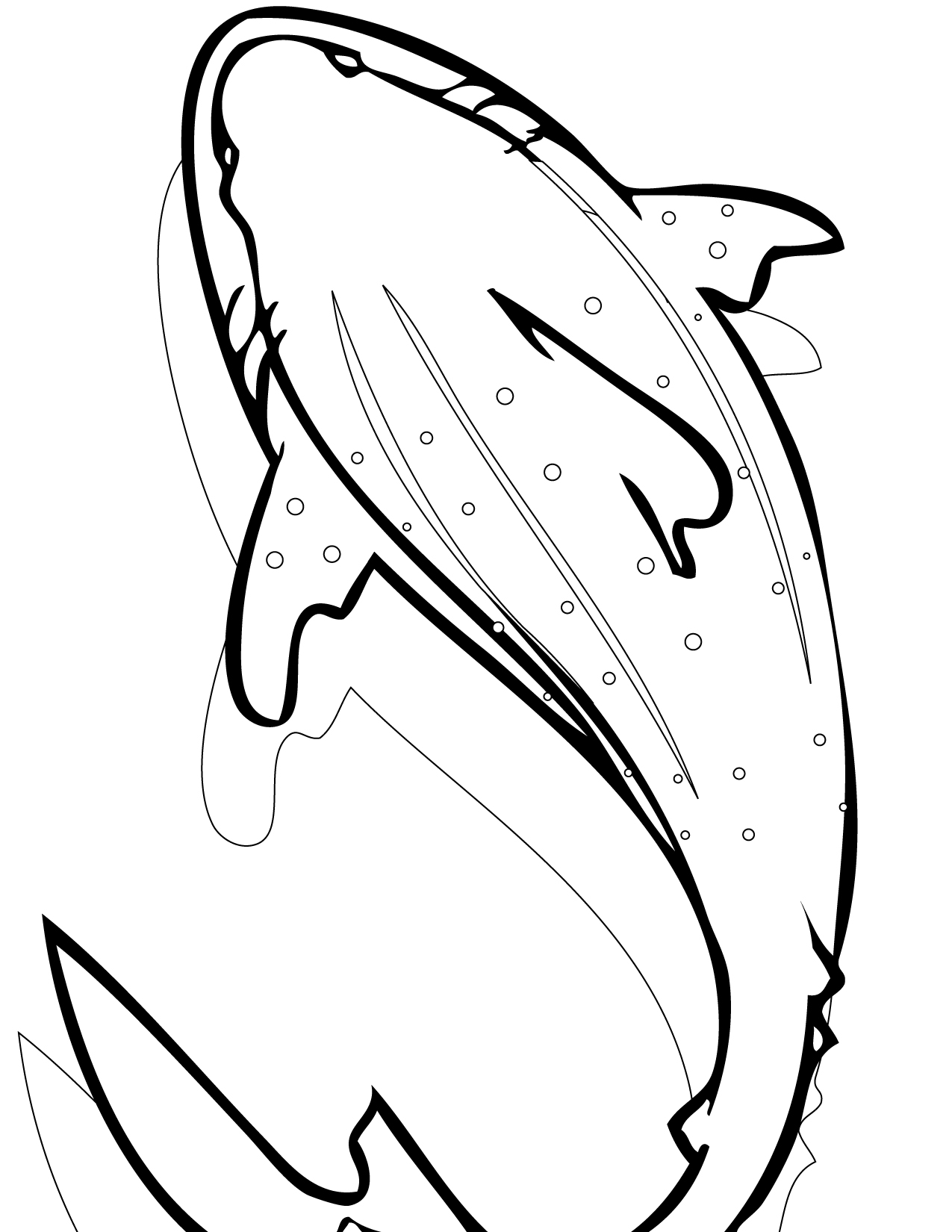 Whale Shark Coloring Page Handipoints