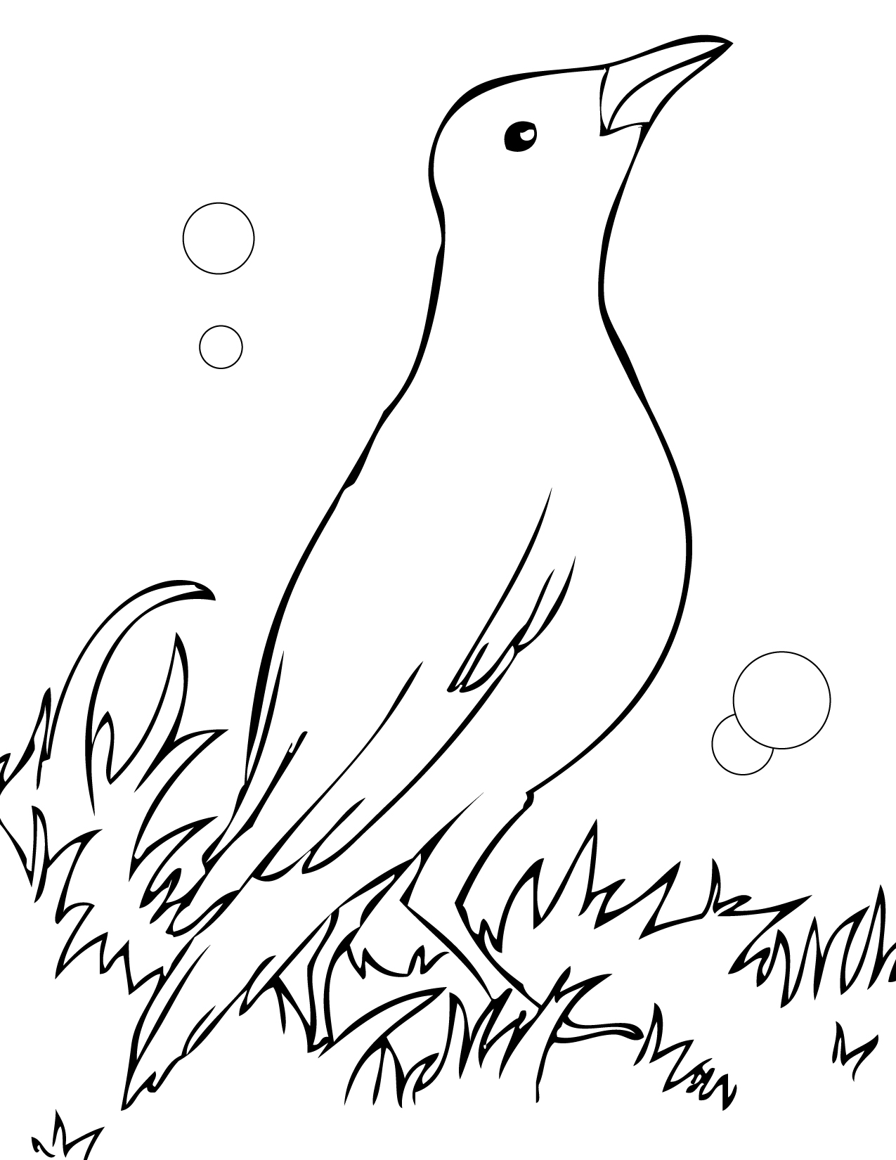 Free Coloring Pages Of Black Bird