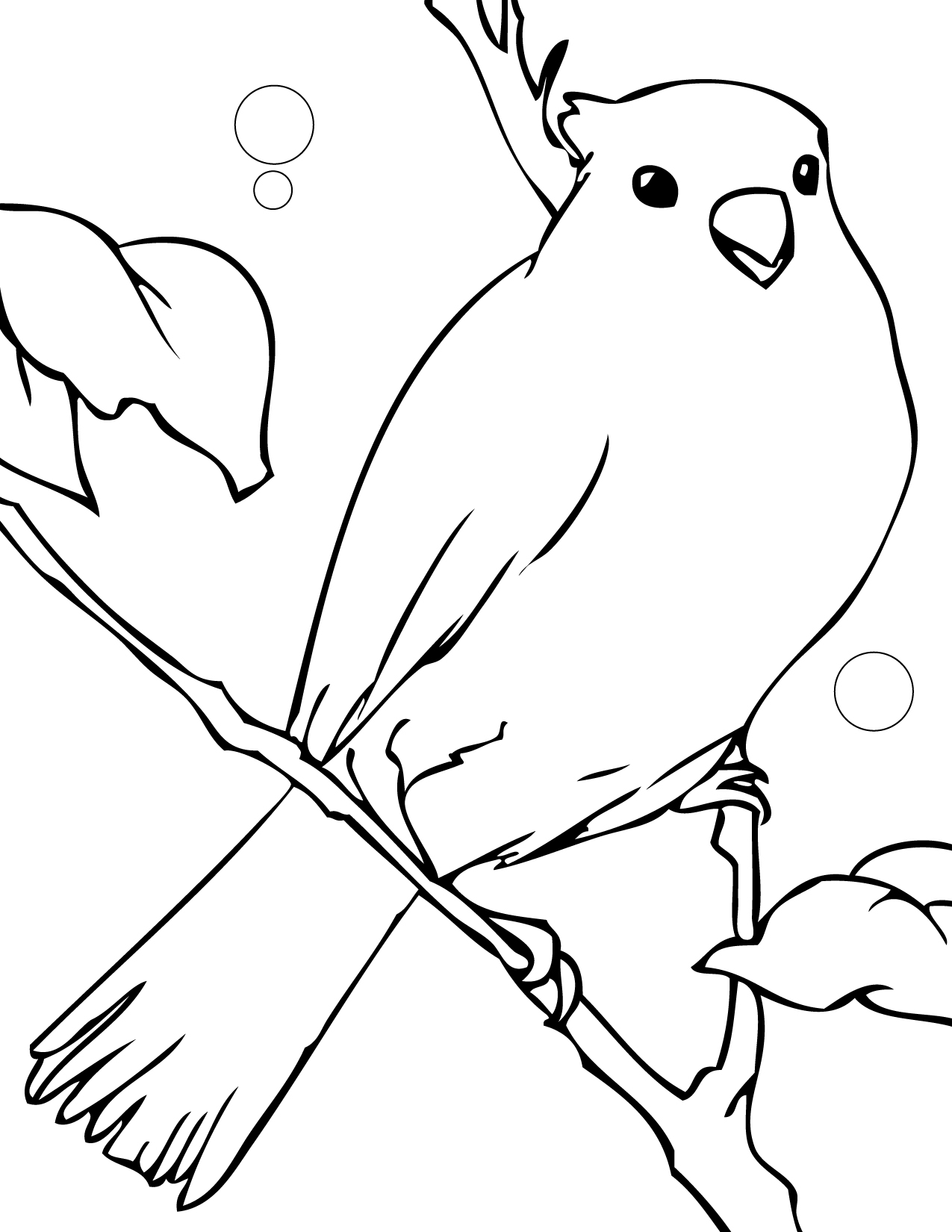 Black Canary Coloring Pages Coloring