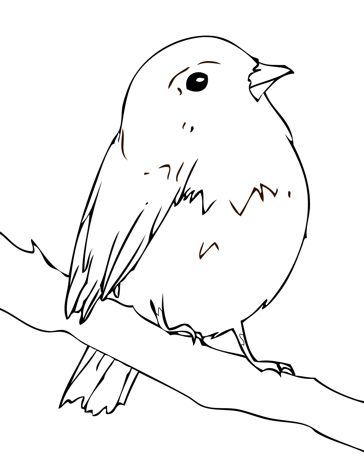 coloring pages of robins - photo#1