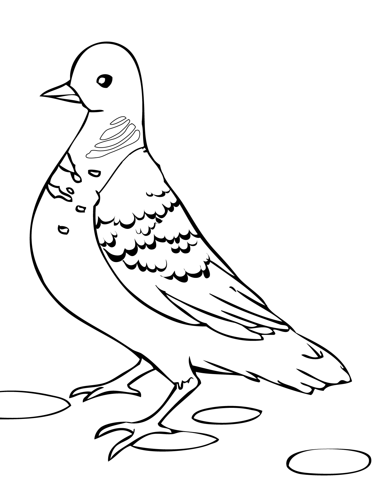 turtle dove template - turtle dove coloring page handipoints